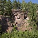Rezerwat Cisowa