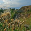 Rezerwat Wietrznia